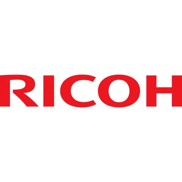 Ricoh Type C2550 Black Original Toner 841196
